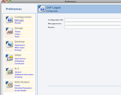 SAP logon set up