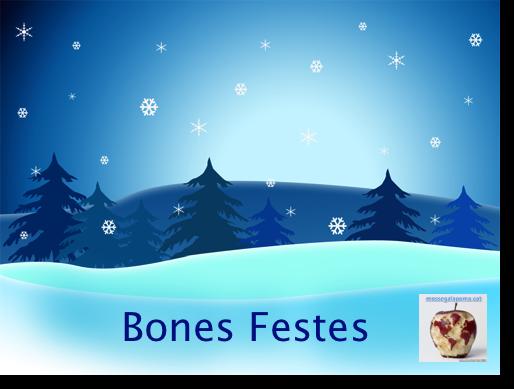 Bones Festes 2008