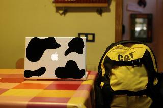 macbook cow 1