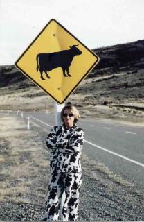 macbook cow 2
